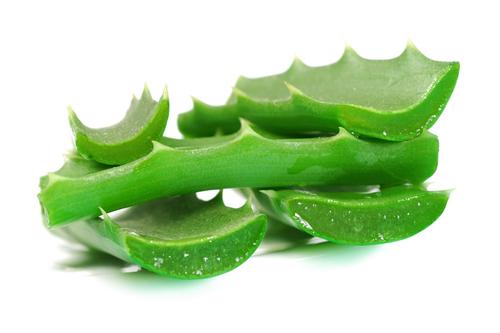 Aloe Vera Body Treatment